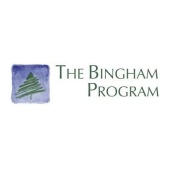 bingham program-NMPHI